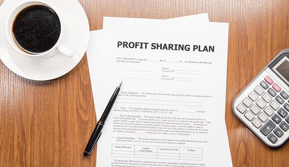 Profit Business Plan
